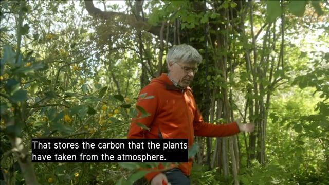 """""""How to rewild your garden"""" with professor Per Gundersen"""